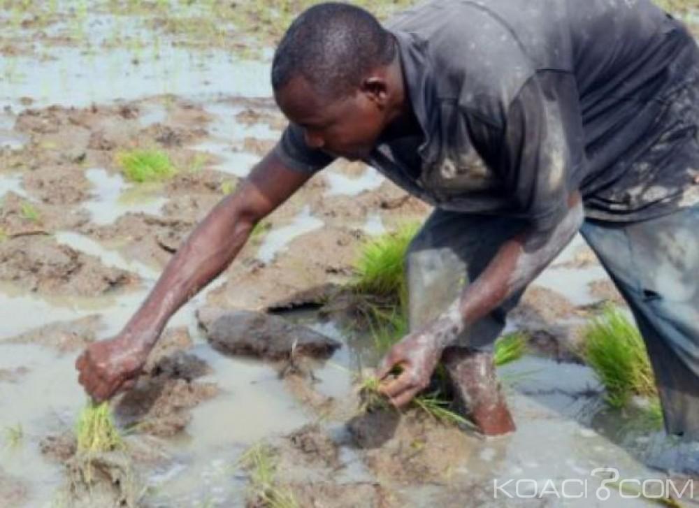 Côte d'Ivoire: Satisfait de la mise en œuvre de la SNDR 2012-2020, l'Etat annonce la création de l'ADERIZ