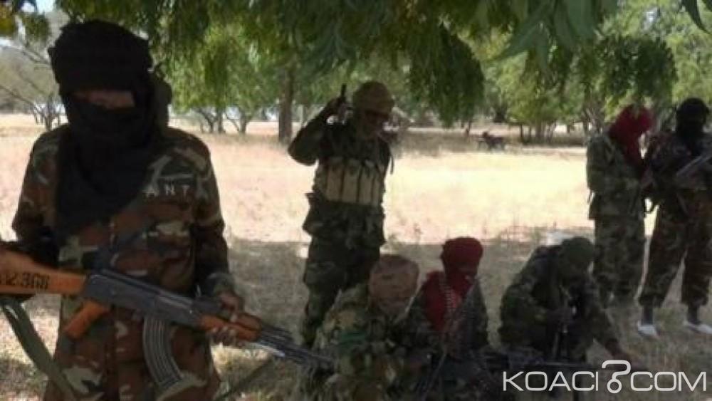 Nigeria: 5 bûcherons accusés d'espionnage, abattus par Boko Hraam dans le nord-est