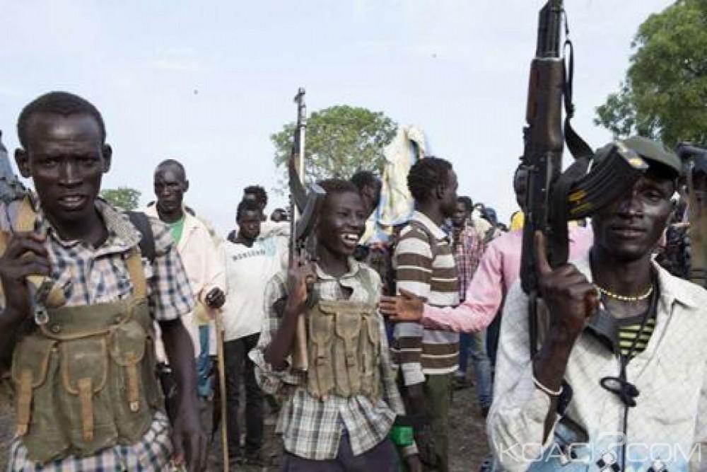 Soudan du Sud: Retenus par des rebelles,les deux pilotes kéyans libérés  après dédommagement