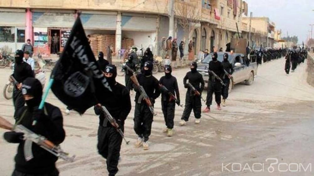 Egypte:  7 soldats et 71 jihadistes  abattus lors d'une opération de «nettoyage» au Sinaï