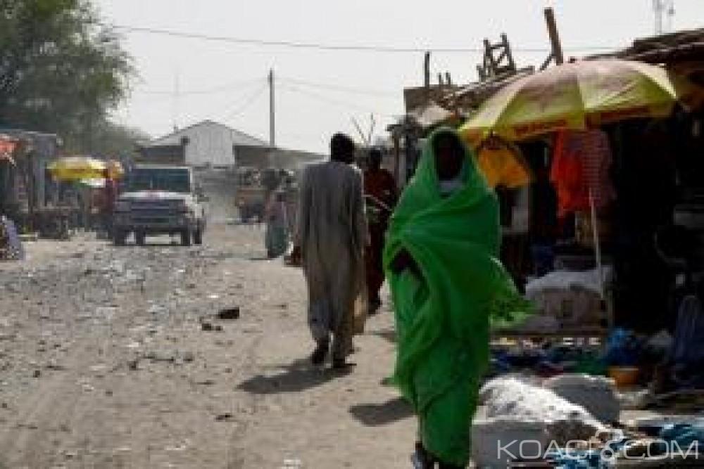 Niger:   Cinq civils  abattus lors d'une  attaque de Boko Haram à Toummour