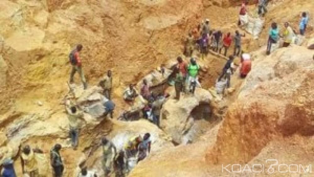 Cameroun: Ressources naturelles, la société civile dénonce les morts d'enfants et les accaparements des terres