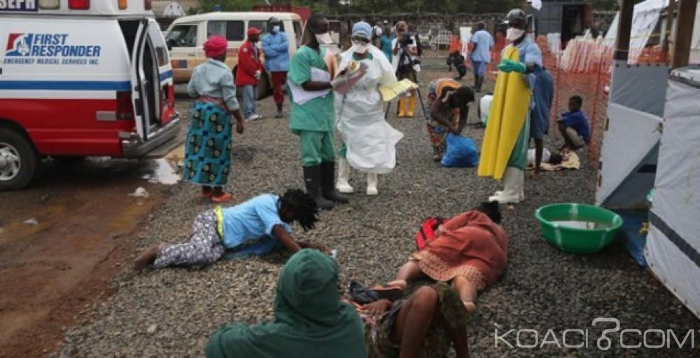 Nigeria: Le bilan de l'épidémie de Lassa monte à 142 morts en 3 mois