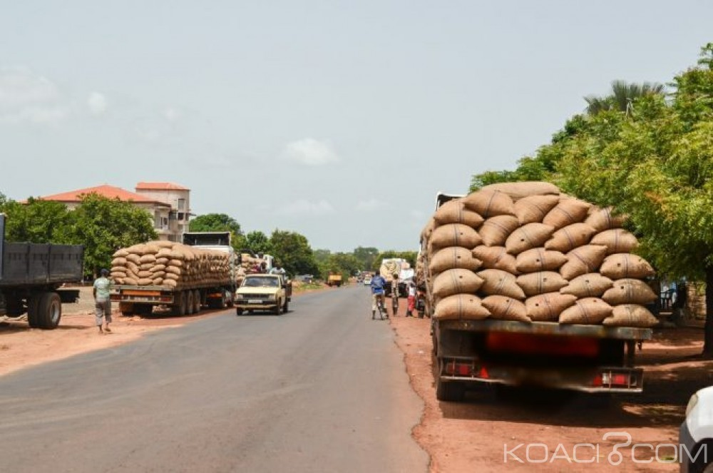 Côte d'Ivoire: Bouaflé, un gros camion de production d'anacarde détourné pour une destination inconnue