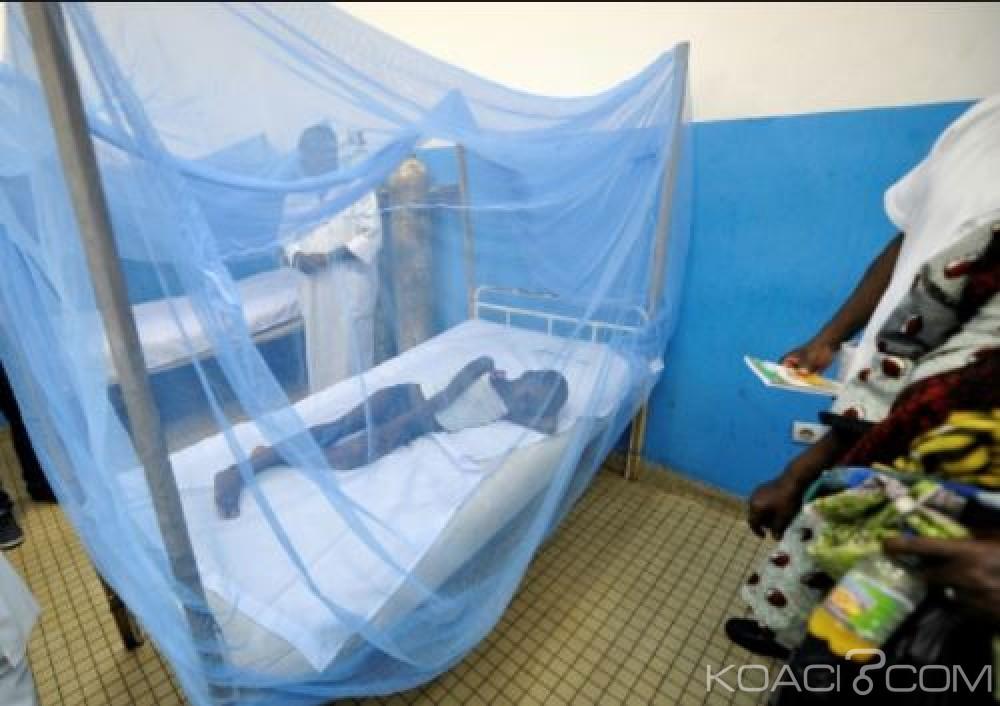 Côte d'Ivoire: Plus de 3000 cas de décès ont été liés au paludisme en 2017, révèle le PNLP