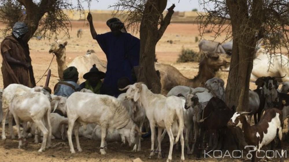 Mali: Poursuites contre un maire qui avait ordonné aux  peuls de quitter sa commune
