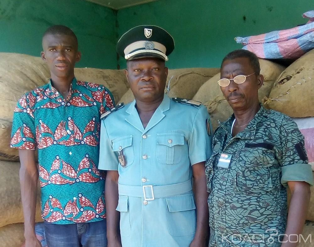 Côte d'Ivoire: Démenti de revue à la baisse du prix de noix de cajou, 12 tonnes de productions d'anacarde saisies à Tengrela à la mi-mai