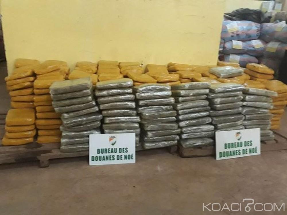 Côte d'Ivoire: Frontière de Noé, 454 plaquettes de cannabis saisies par les douanes en provenance d'Accra dissimilées dans des marchandises