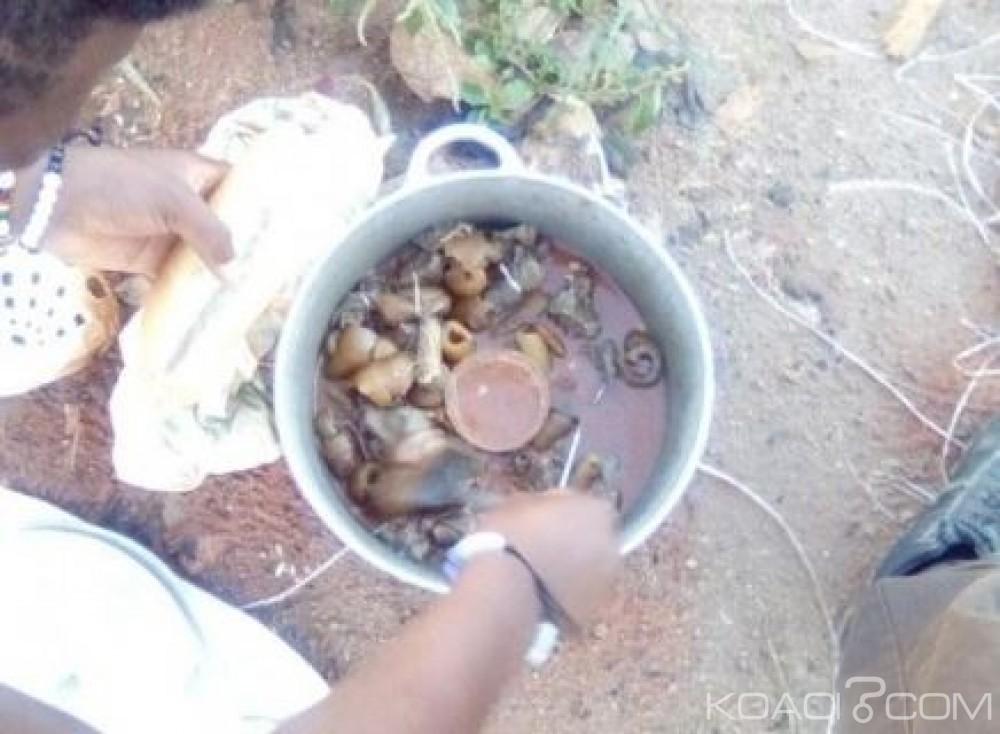 Cameroun: Vendre la peau de bœuf pour lutter contre la pauvreté