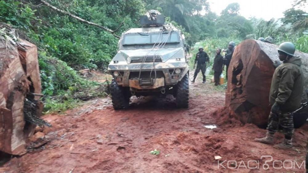 Cameroun: Nouvelles exécutions sommaires attribuées à l'armée, Yaoundé dénonce une «intox»