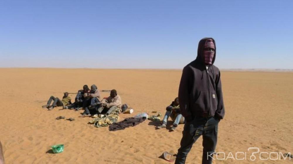 Algérie:  Plus de 400 migrants secourus en deux jours en plein désert