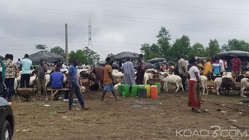 Côte d'Ivoire: Horrible découverte d'un corps décapité à Adjamé dans un parc à bétail