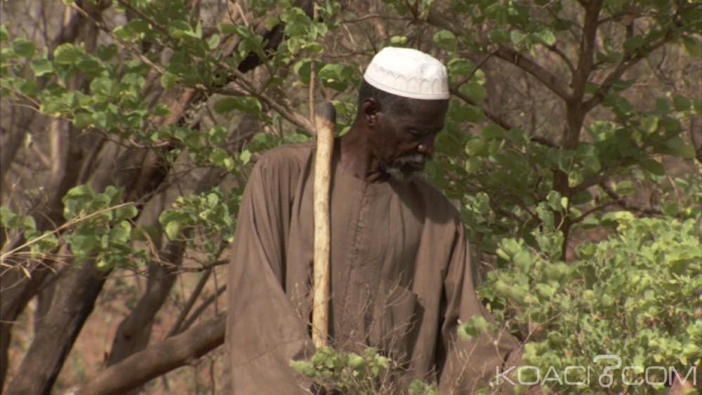 Burkina Faso : Yacouba Sawadogo, l'homme qui a arrêté le désert, lauréat du prix Nobel alternatif