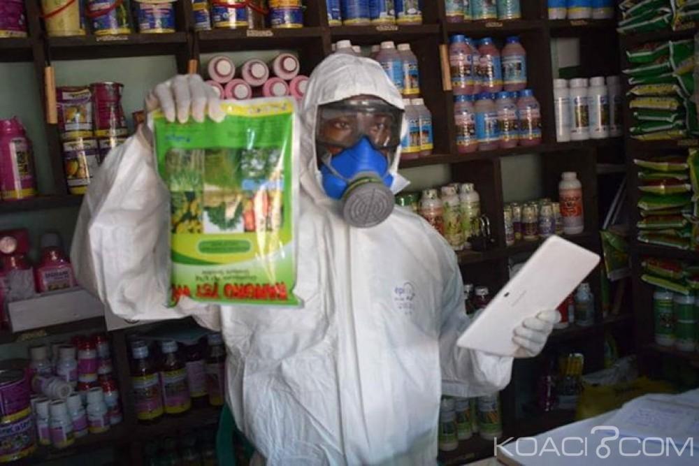 Côte d'Ivoire :  12 milliards de FCFA de pesticides contrefaits vendus chaque année pour un préjudice d'environ 3 milliards de FCFA causé à l'Etat