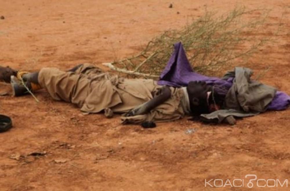 Mali : Une vingtaine de civils touaregs tués par des individus à moto prés du Niger