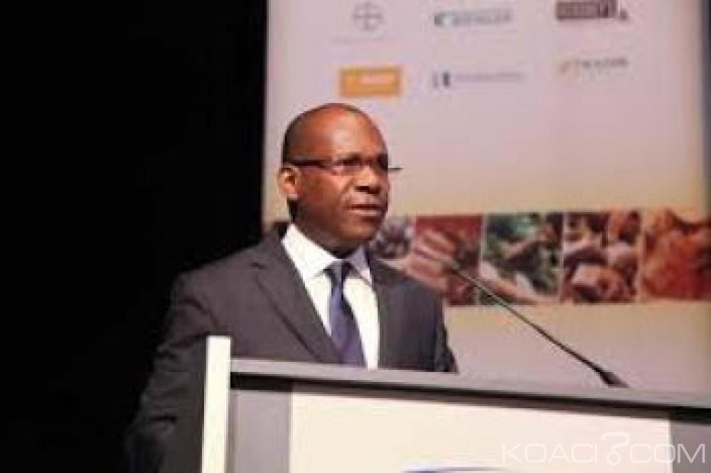 Côte d'Ivoire : Directeur  exécutif de l'ICCO, l'ivoirien Marc Anga remplacé par un Belge