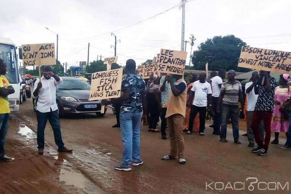 Côte d'Ivoire : Des planteurs d'hévéa bloquent la route à Dabou, ils réclament leur argent à un soit disant «ami» du chef de l'État