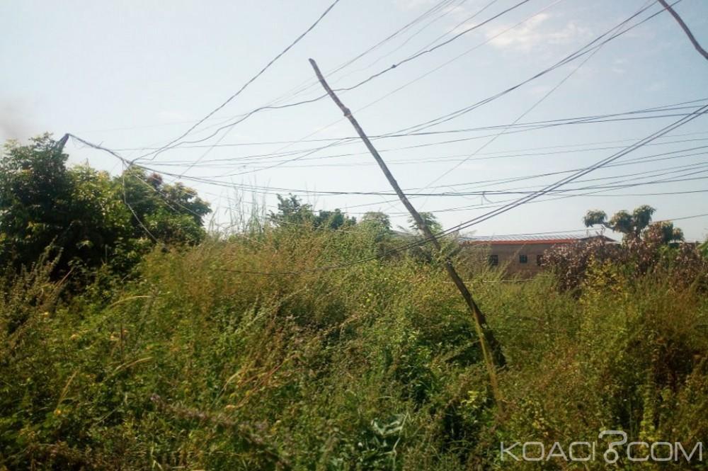 Côte d'Ivoire : Après les 7 morts à Tollakouadiokro, pointée du doigt, la CIE se dégage de toutes responsabilités