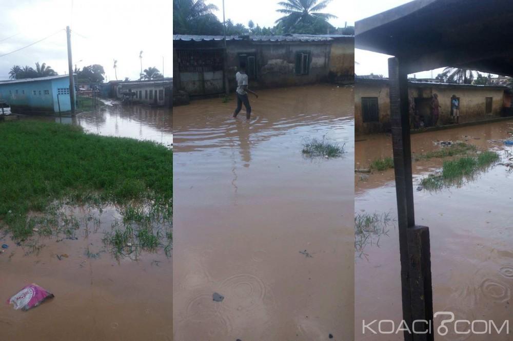 Côte d'Ivoire : Abobo, impuissants face au pire, les habitants d'Avocatier-Agnissankoi appellent Hamed Bakayoko au secours