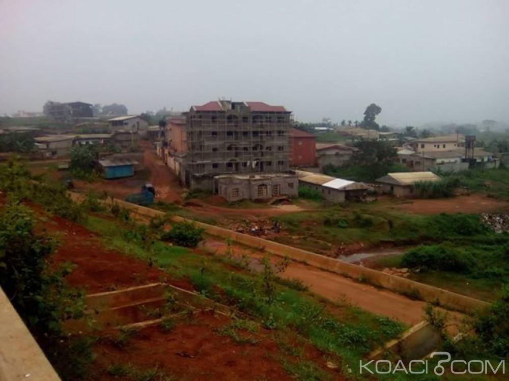 Cameroun :  Les performances économiques camerounaises en hausse d'après le FMI