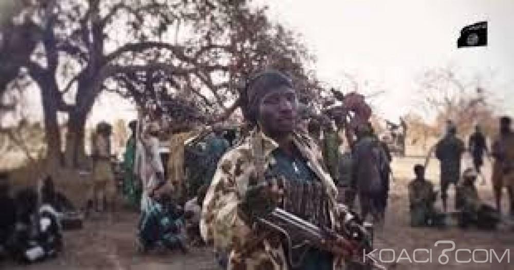 Niger : Une dizaine de jeunes filles  kidnappées par des éléments de Boko Haram à Toumour