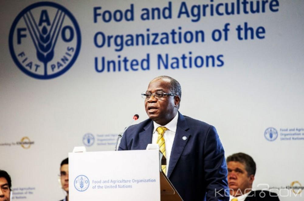 Côte d'Ivoire : L'ivoirien Gouantoueu Robert Guéï nommé nouveau Coordonnateur sous-régional de la FAO