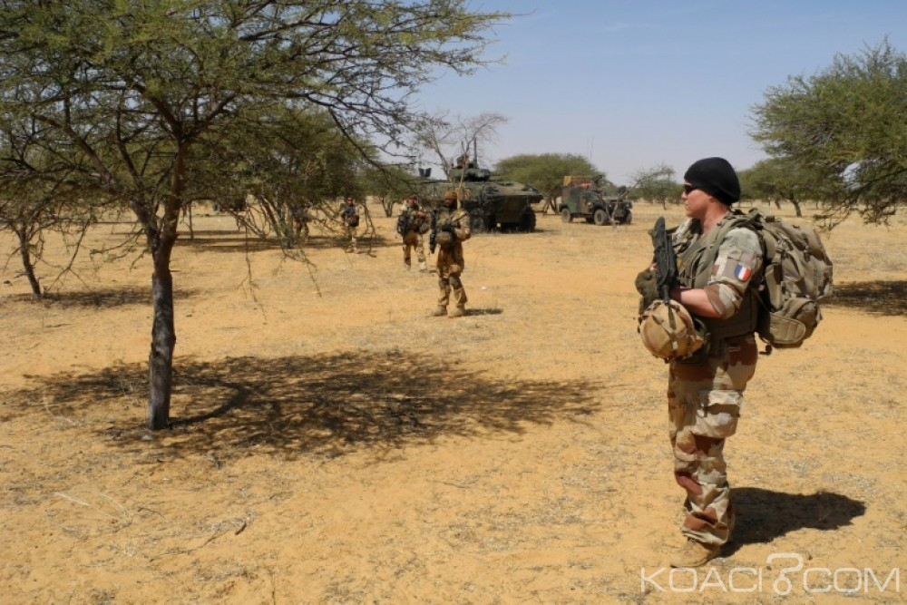 Niger  : 15 terroristes «mis hors de combat» par les forces armées près de la frontière malienne