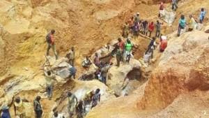 Cameroun: OSC et parlementaires se mettent ensemble pour la bonne gestion des ressources naturelles