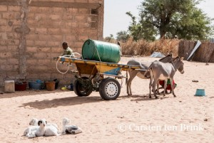 Koacinaute: Le Sénégal des disparités…: Pour que nul n'en ignore !